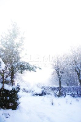 Buy stock photo A photo of a Winter landscape early morning