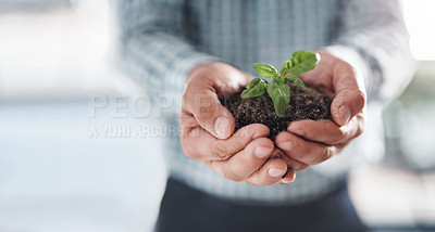 Buy stock photo Closeup shot of an unrecognisable businessman holding a plant growing in soil