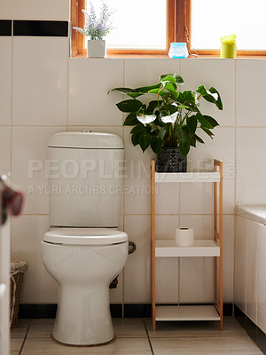 Buy stock photo Shot of an empty bathroom at home