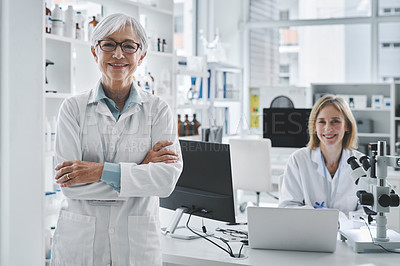 Buy stock photo Portrait of a mature scientist standing in a lab with her colleague in the background