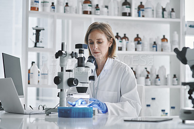 Buy stock photo Shot of a mature scientist using a microscope in a lab
