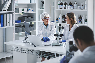 Buy stock photo Shot of two mature scientists having a discussion in a lab