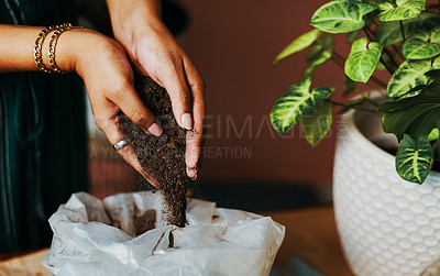 Buy stock photo Cropped shot of an unrecognisable woman holding potting soil while gardening at home