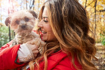 Buy stock photo Cropped shot of an attractive young woman and her adorable little puppy in the forest during autumn