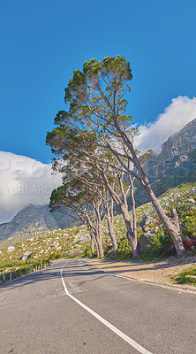 Buy stock photo Walking the train of Table Mountain National Park, Cape Town, South Africa.