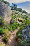 Mountain trail - Table Mountain National Park