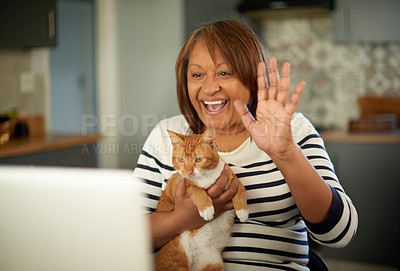 Buy stock photo Cropped shot of a woman holding her cat while on a video call on her laptop