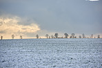 Wintertime in the countryside - Denmark