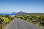 The wilderness of Cape Point National Park