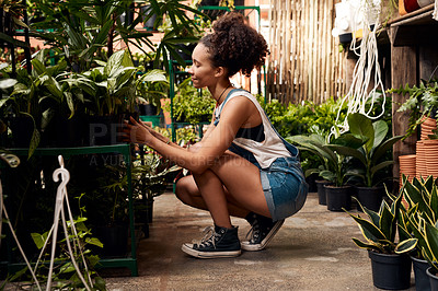 Buy stock photo Shot of a young woman working with plants in a garden centre