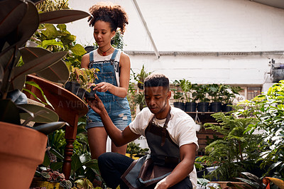 Buy stock photo Shot of a young man and woman working with plants in a garden centre