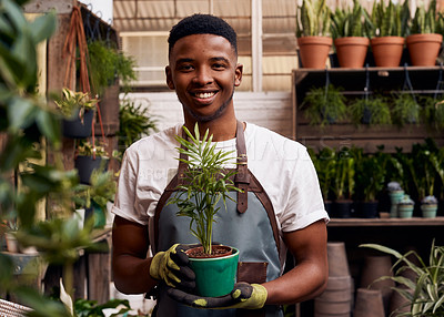 Buy stock photo Portrait of a young man holding a potted plant while working in a garden centre