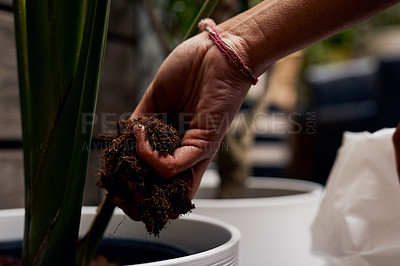 Buy stock photo Shot of an unrecognisable woman putting soil into a potted plant while working in a garden centre