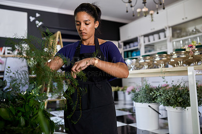 Buy stock photo Shot of a young woman arranging plants at work in a floral store