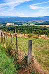 Countryside, farmland and forest - close to Lyon, France